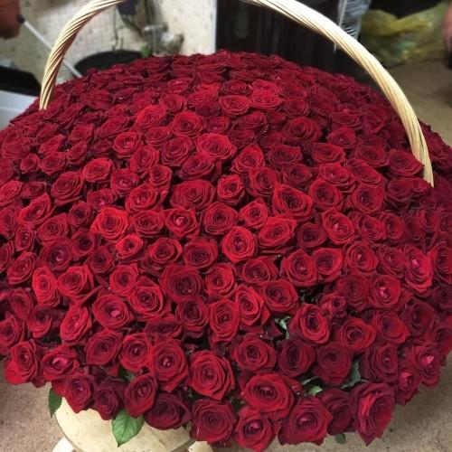 Купить на заказ 1001 роза с доставкой в Байконуре