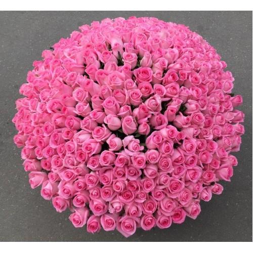 Купить на заказ 501  роза с доставкой в Байконуре