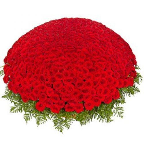 Купить на заказ 301  роза с доставкой в Байконуре